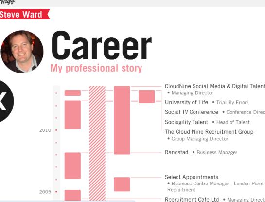 Steve vizify career