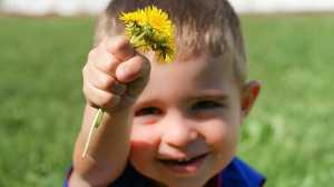 boy flower